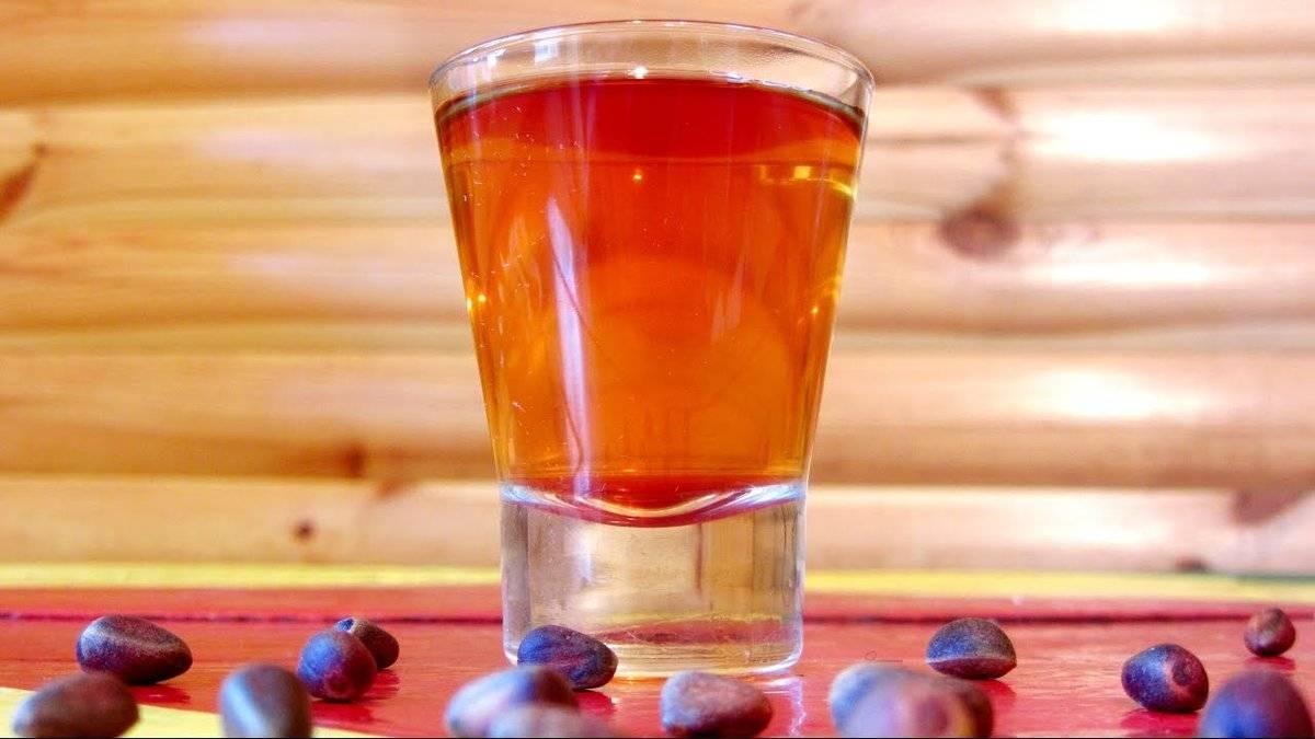 Лечебные свойства настойки на кедровых орешках и способы приготовления - рецепты, противопоказания, отзывы