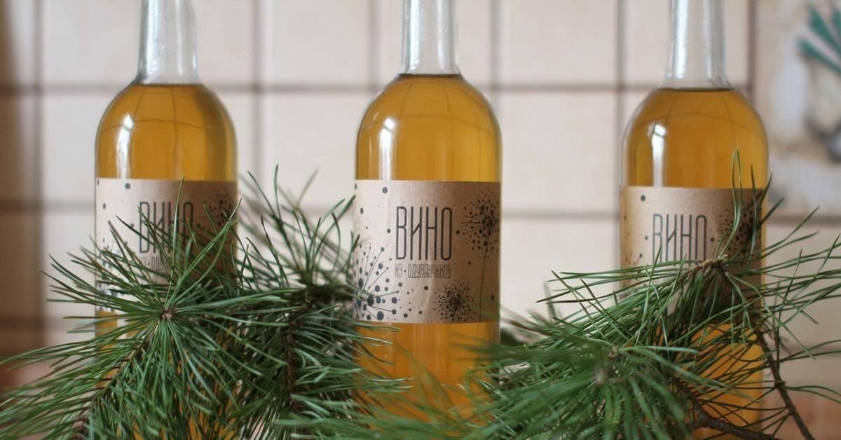 Как приготовить вино из одуванчиков в домашних условиях