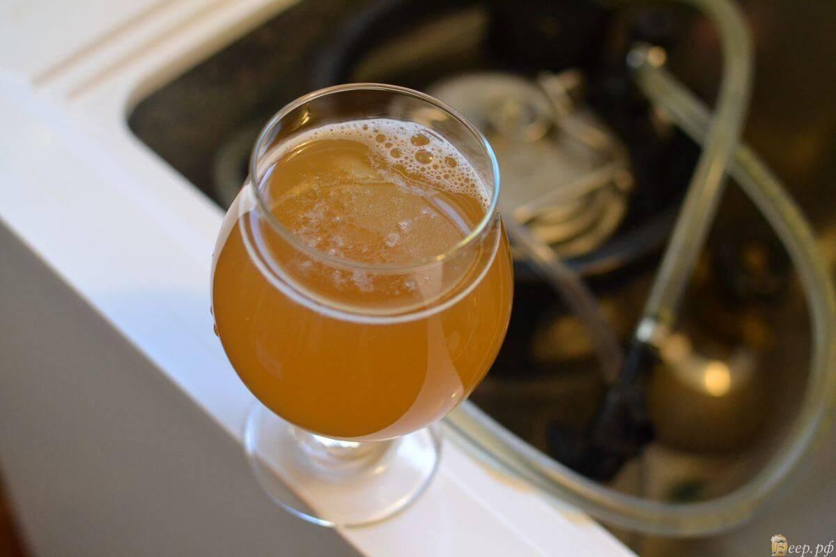 Как варить пиво в домашних условиях от а до я