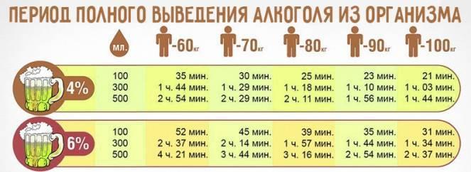 Сколько времени пиво держится в организме человека: 0,5 л, 1 л, 1,5 л, 2л.