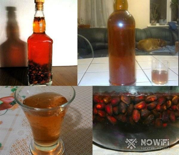 Настойка на кедровых орешках на водке рецепт: вкусно и полезно