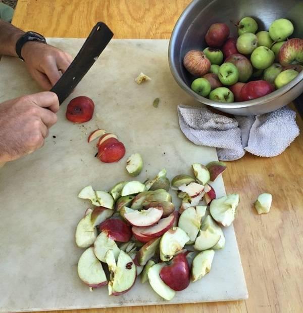 Домашнее вино из яблок по технологии виноделов