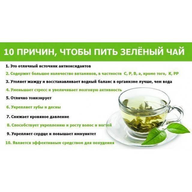 Чай от похмелья: зеленый, черный или с лимоном, какой пить полезнее