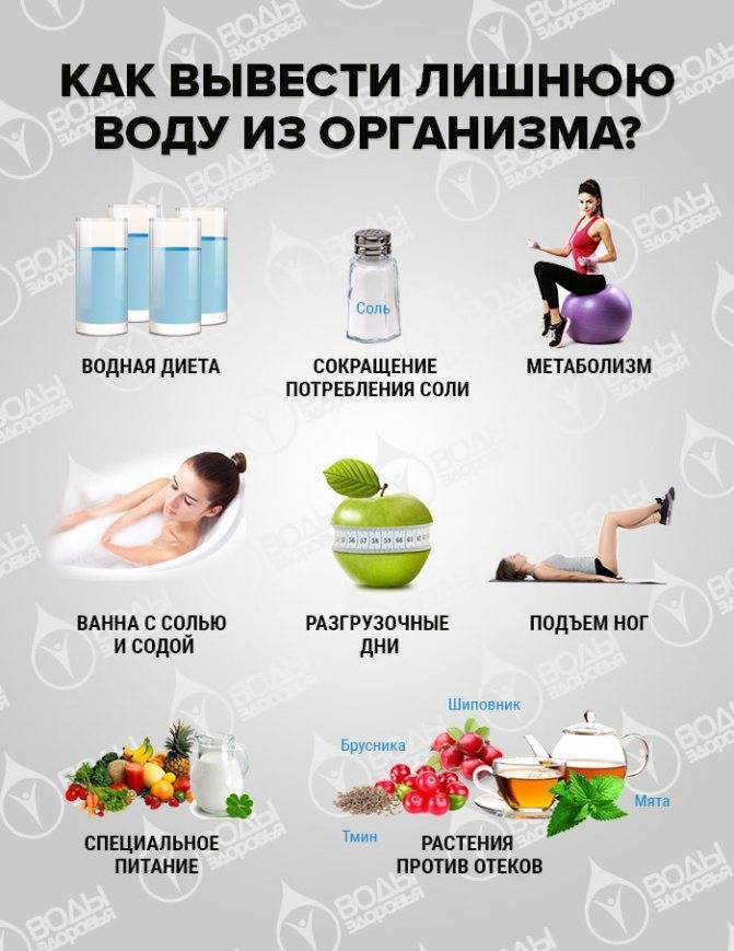 Какие продукты выводят лишнюю воду: список и таблица продуктов, выводящих воду из организма - sport-at-home