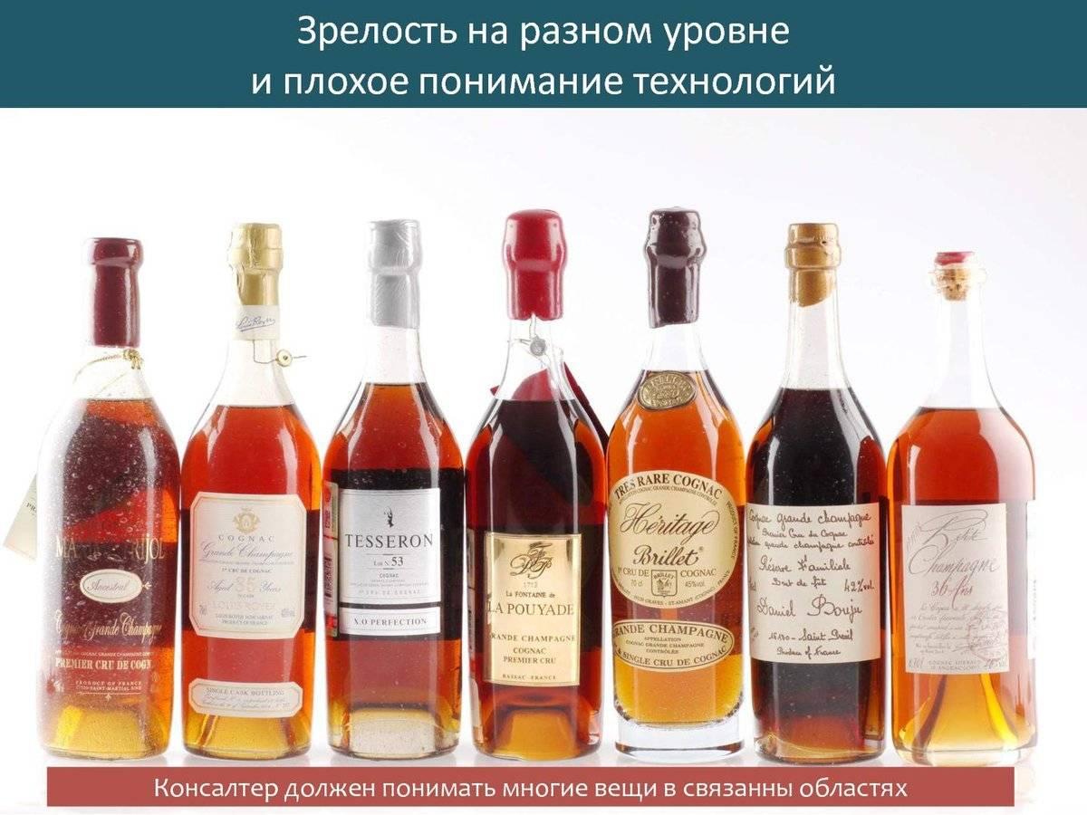 Как выбрать вино: какое хорошее, правила выбора в супермаркете и магазине
