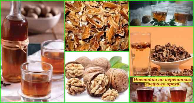 Грецкие орехи настойка на водке. полезная настойка грецкого ореха на водке