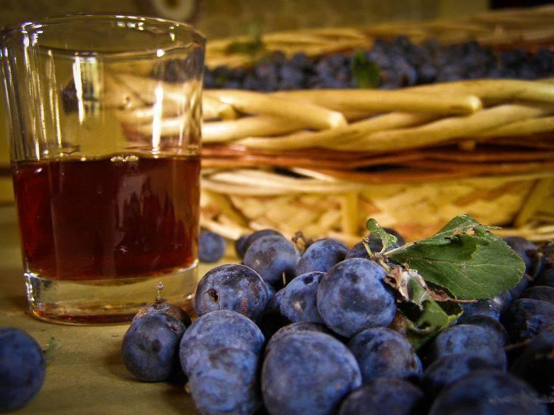 Настойка из винограда на водке - хорошие рецепты сладкого и легкого алкоголя