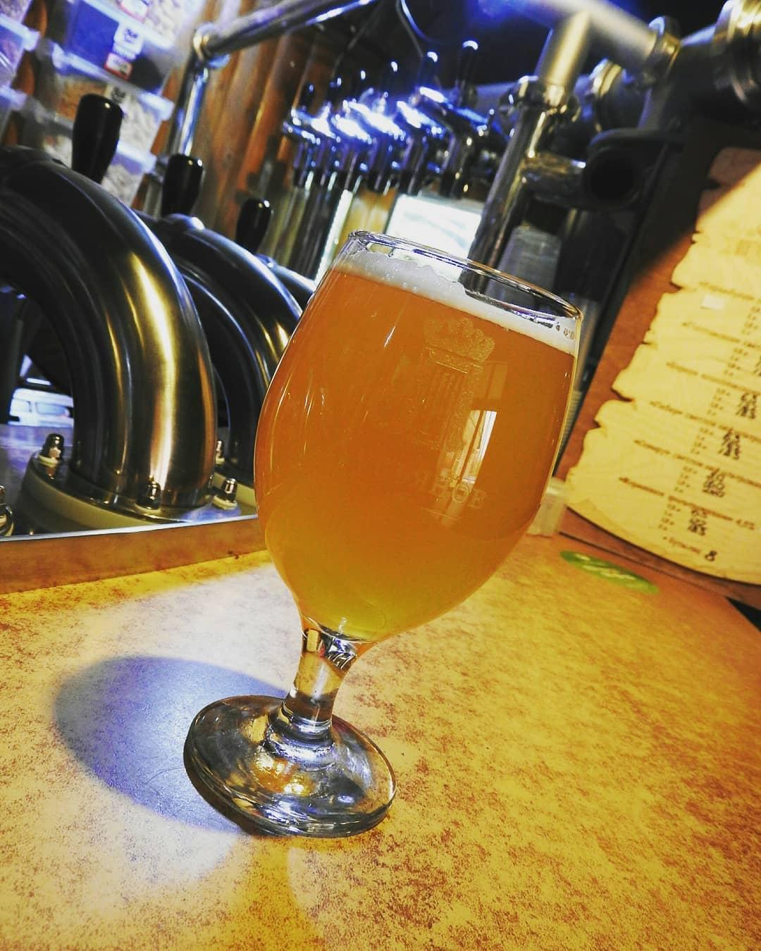 Пиво: отличия нефильтрованного живого пива от фильтрованного, полезные свойства и вред