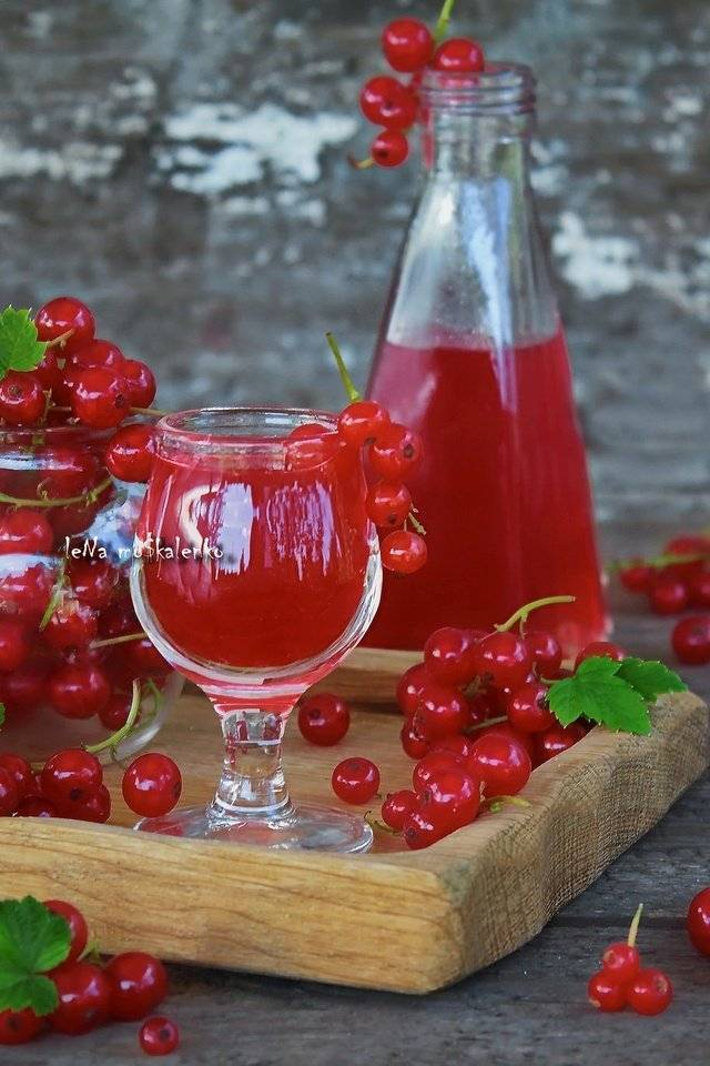 Настойка на смородине на спирту - рецепт из свежей и замороженной ягоды