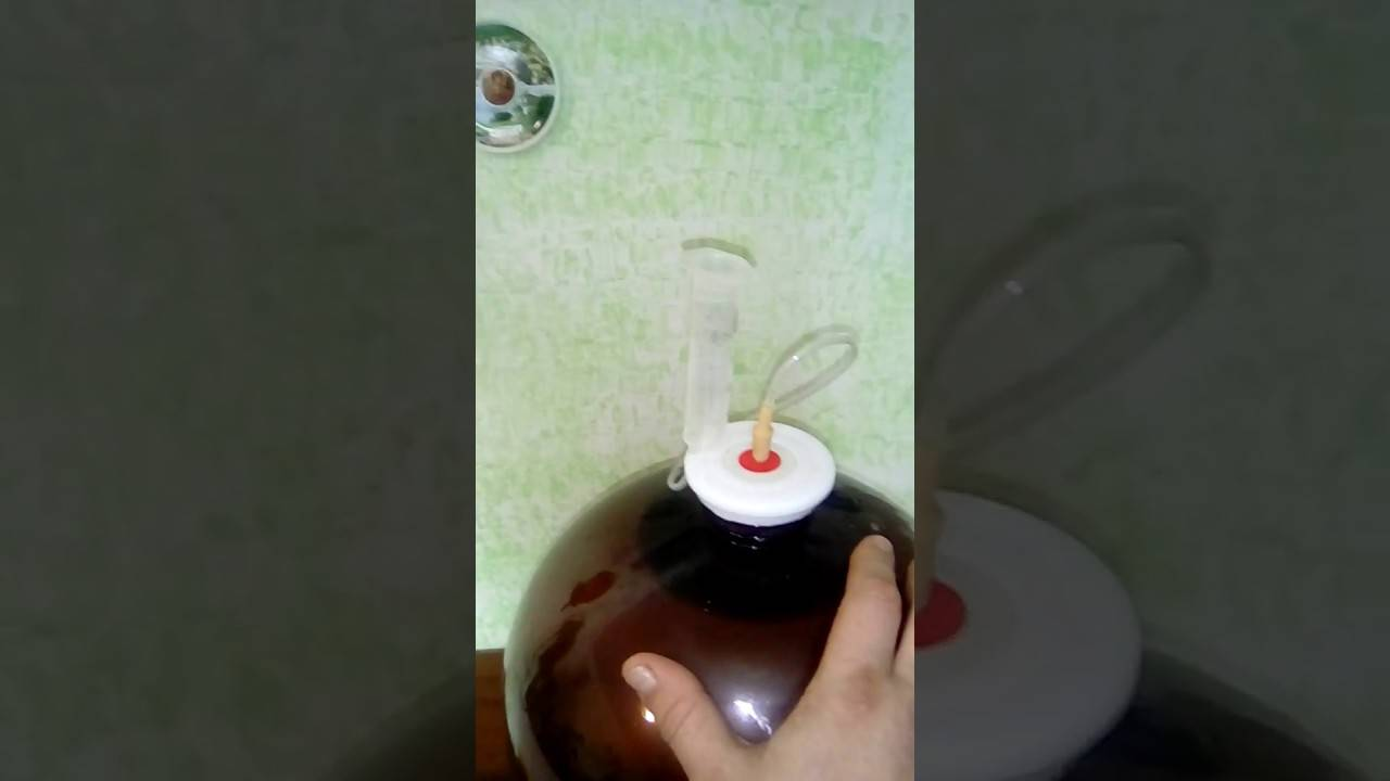 Изготовление гидрозатвора для брожения своими руками