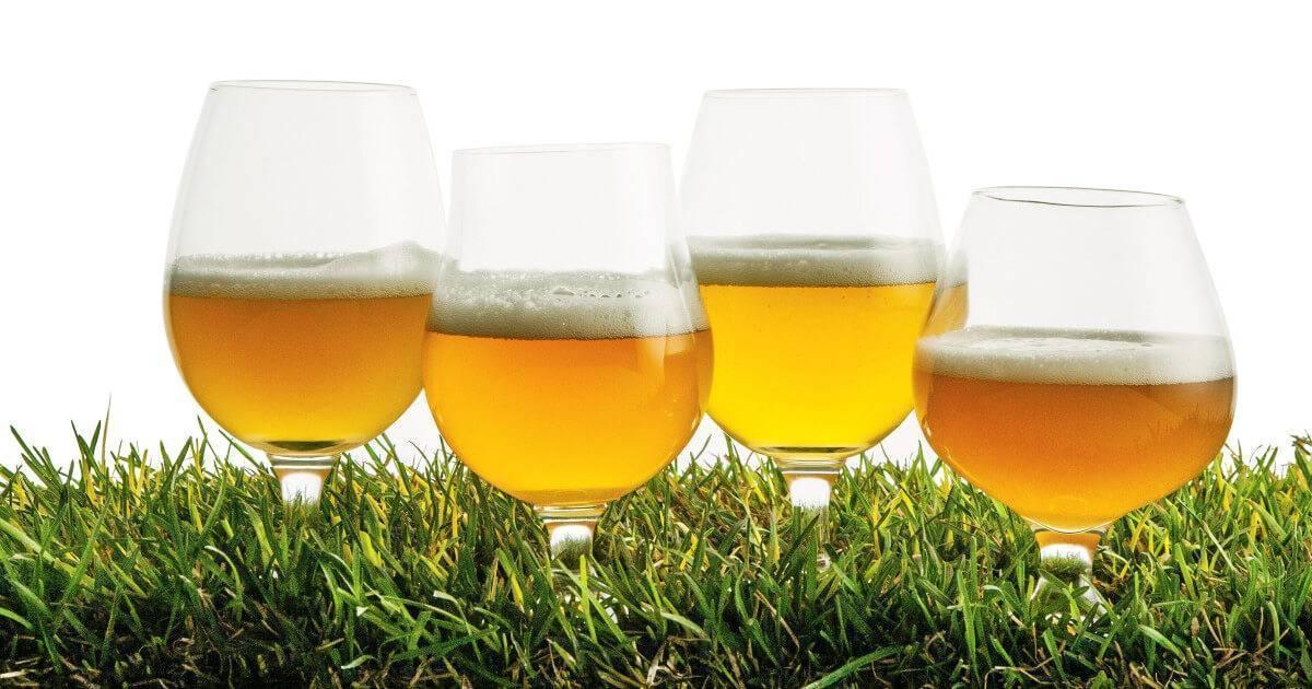 Фильтрованное и нефильтрованное пиво. в чем разница и какое лучше?