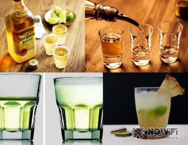 Как пить текилу правильно с солью, чем закусывать и варианты коктейлей