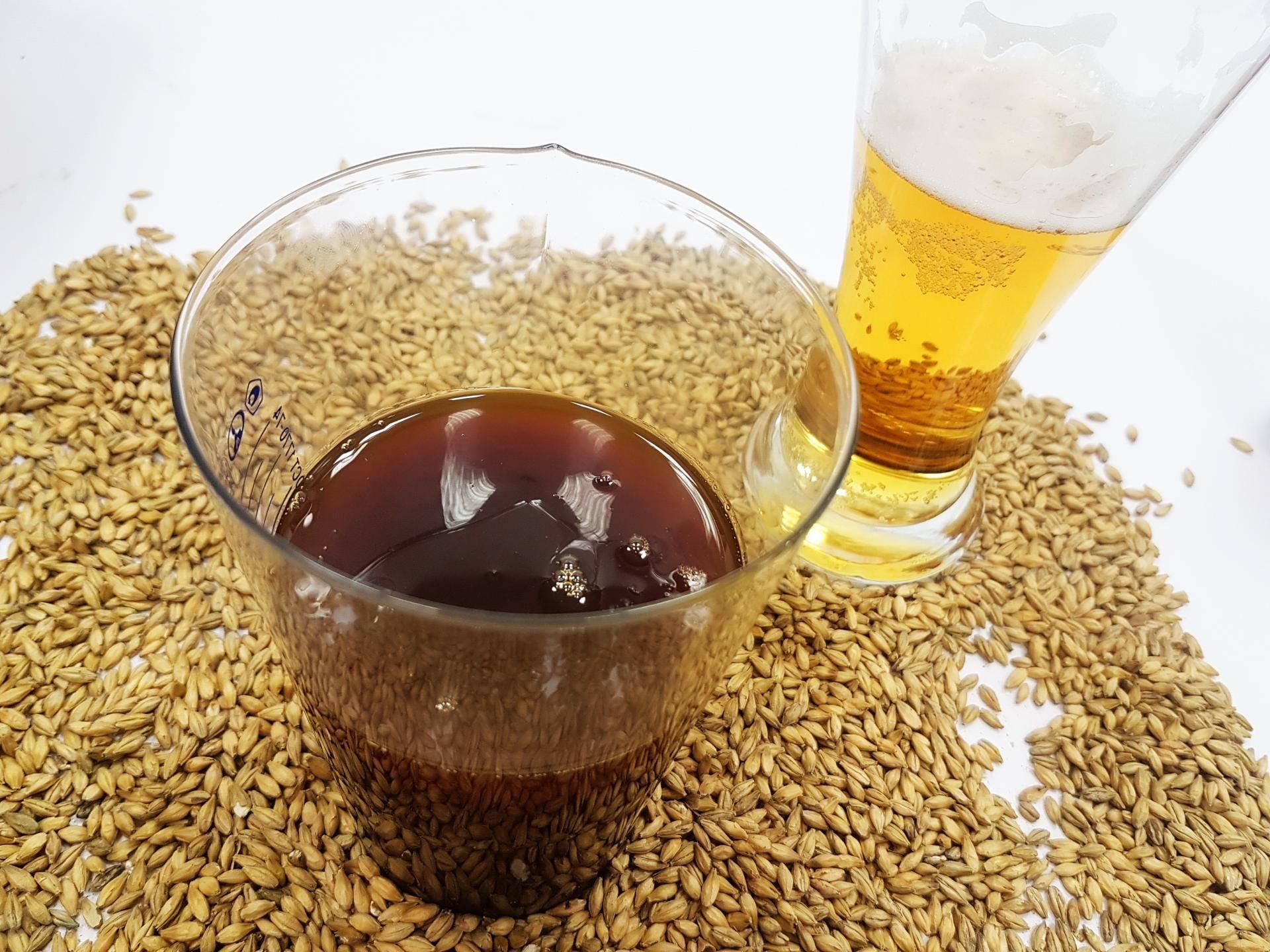 Как сварить вкусное пиво в домашних условиях: 2 популярных рецепта