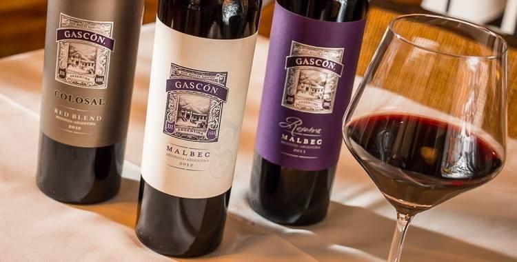 Вина из мальбека — malbec сорт винограда, описание и характеристики