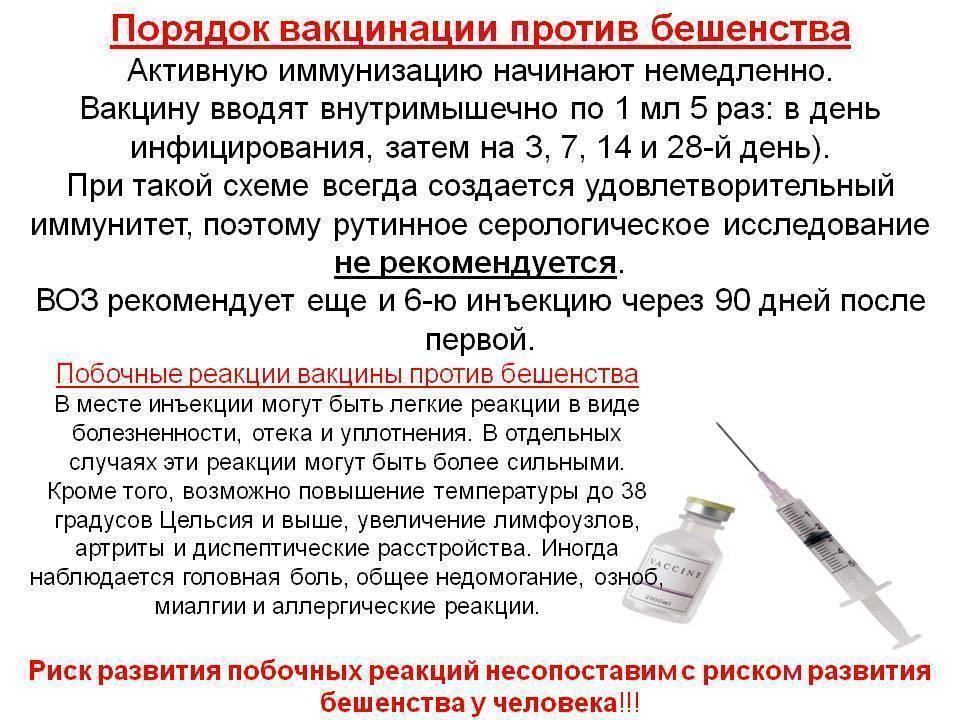Побочные действия у взрослых после прививки от столбняка