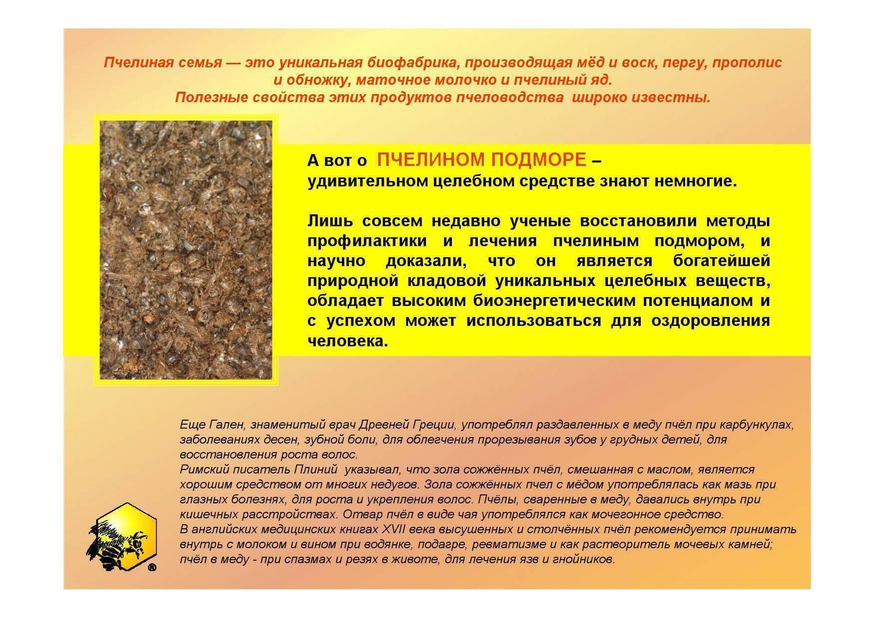 Пчелиный подмор: от чего помогает, польза и вред, применение   здоровье и красота
