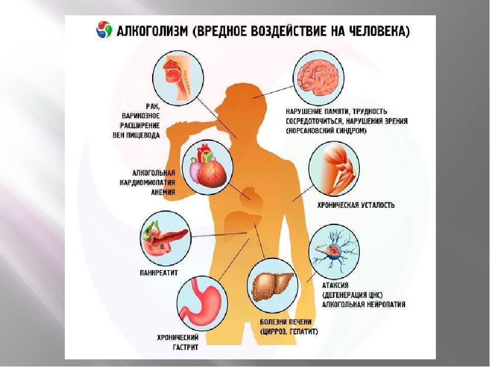 Положительное влияние алкоголя на иммунитет
