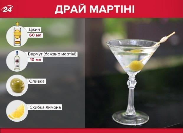 Коктейли с мартини: пошаговые рецепты, быстрые и простые от марины выходцевой