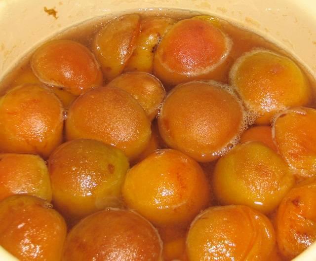 Рецепты абрикосовых наливок и настойки на абрикосах - 6 штук