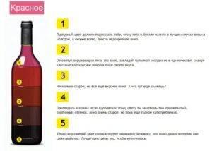 Как правильно пить вино?