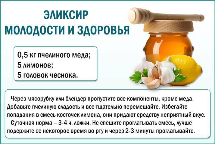 Смесь меда, чеснока и лимона – как правильно принимать