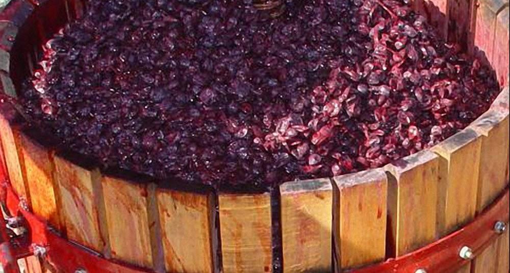 Необходимое оборудование для вина в домашних условиях