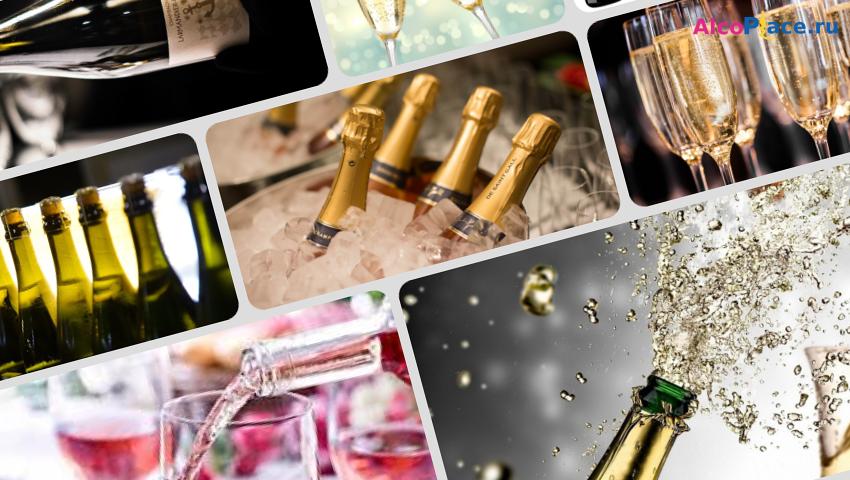 Классификация шампанского: сорта, виды, названия