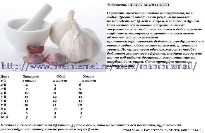 Как проводится чистка сосудов чесноком и лимоном: отзывы врачей