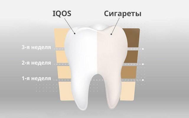 Можно ли есть арбуз после отбеливания зубов | стоматологический портал