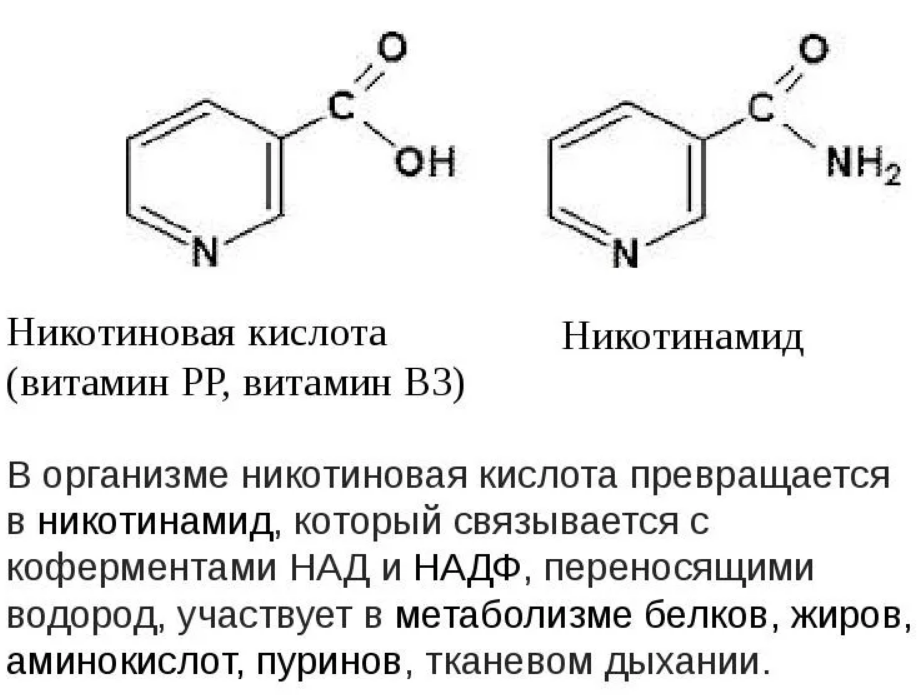 Никотиновая кислота - инструкция по применению, показания, противопоказания