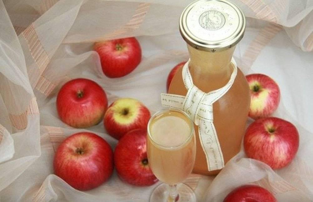 Сидр полезный, разный и вкусный: секреты приготовления яблочного напитка в домашних условиях