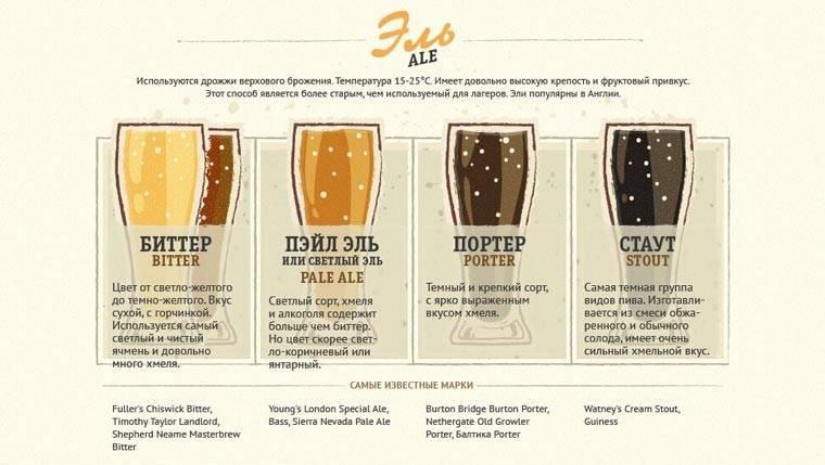 Брожение пива: первое и вторичное, температура и сроки брожения