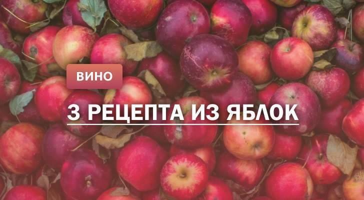 Как сделать вино из яблок в домашних условиях: простой рецепт на выбор