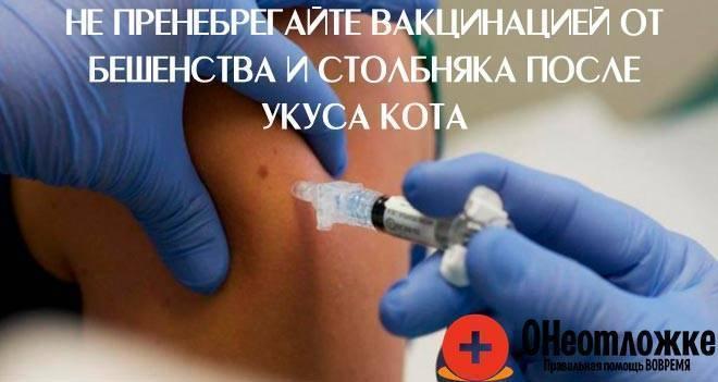 Алкоголь после прививки от дифтерии: можно ли употреблять спиртное и во что это может вылиться?