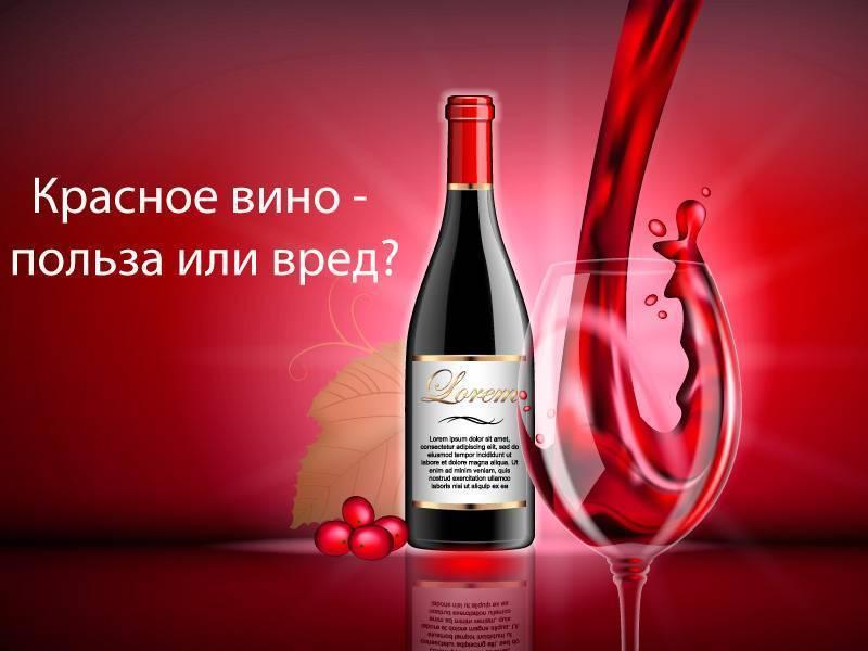 Красное сухое вино: польза и вред, влияние на организм человека