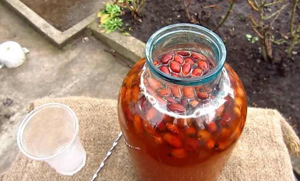 Настойка боярышника / настойки / tvcook: пошаговые рецепты с фото
