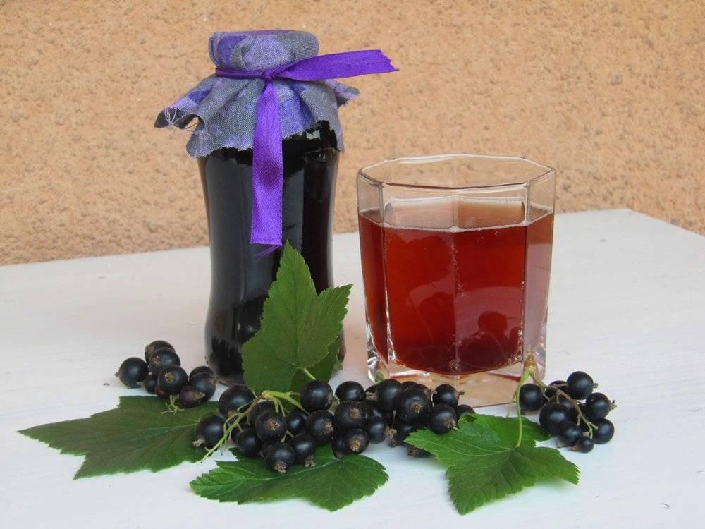 Черничный ликер: 5 рецептов в домашних условиях