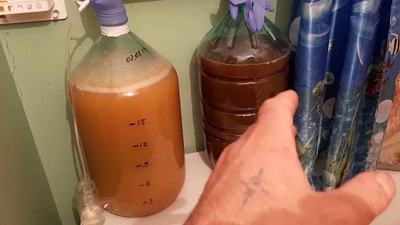 Домашний яблочный сидр — пошаговый фото рецепт приготовления в домашних условиях