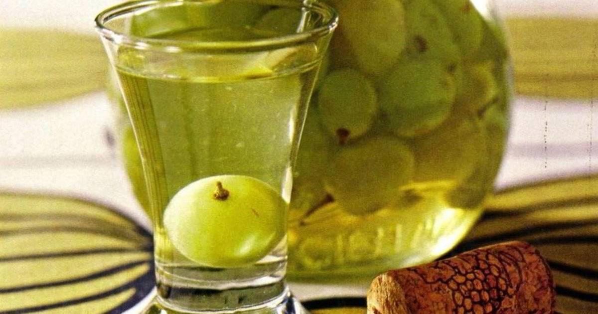Как приготовить водку из яблок в домашних условиях — изучаем все нюансы