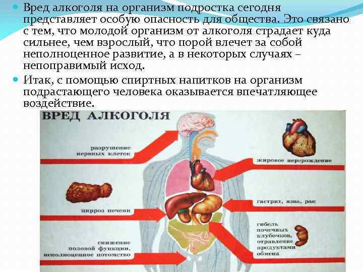 Как алкоголь влияет на организм человека - токсическое воздействие на органы и системы