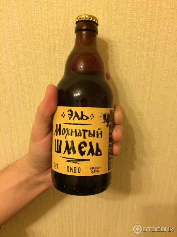 Обзор пива мохнатый шмель