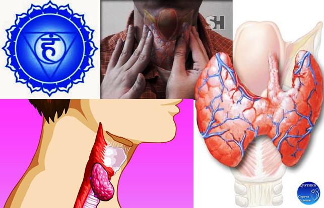 Диета после удаления щитовидной железы у женщин