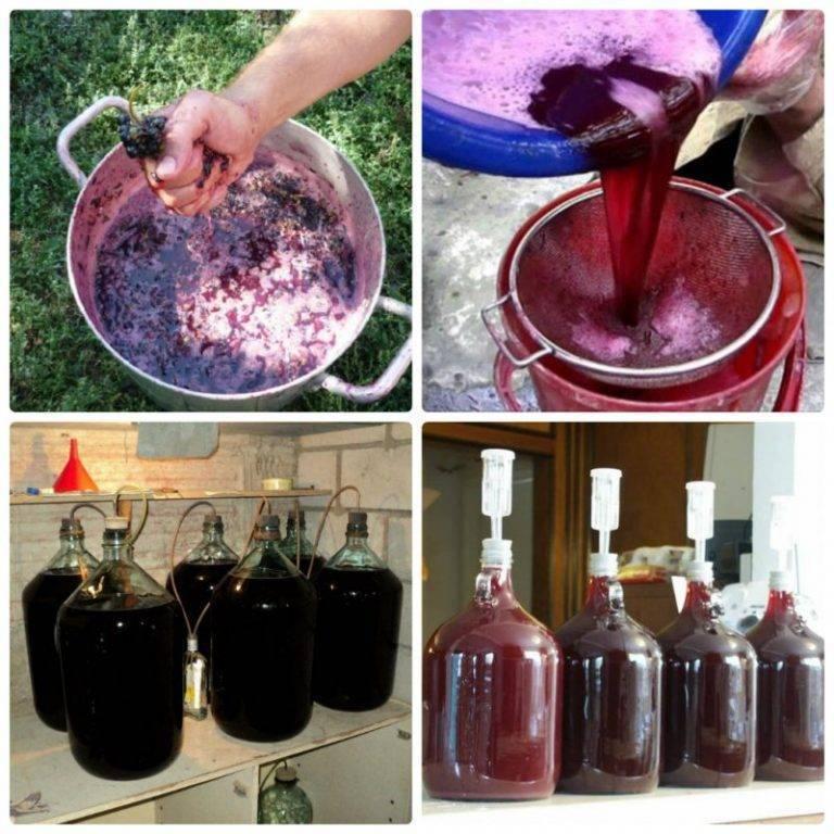 Сухое вино: как сделать