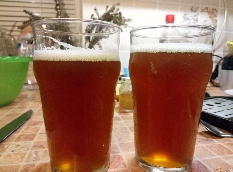 Пшеничное пиво: рецепт приготовления в домашних условиях