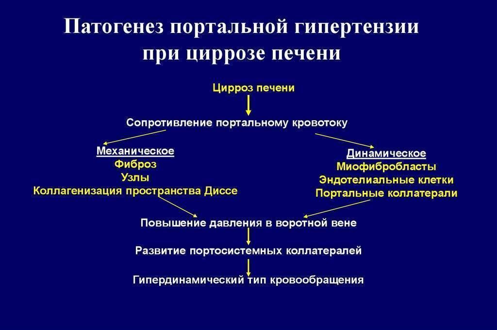 Синдром портальной гипертензии: признаки, лечение при циррозе печени