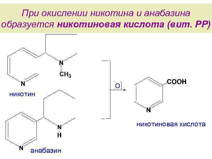 Никотиновая кислота и никотин: что общего?