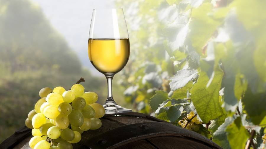 Вино из крыжовника: 7 рецептов в домашних условиях