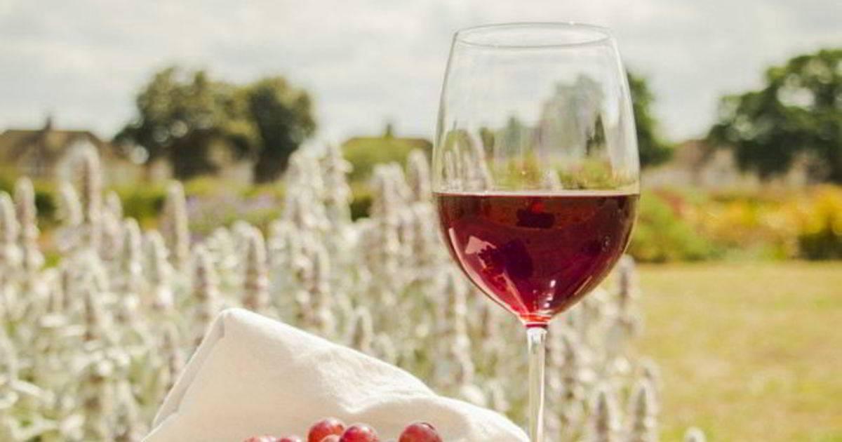 Виноград Лидия и вино из него
