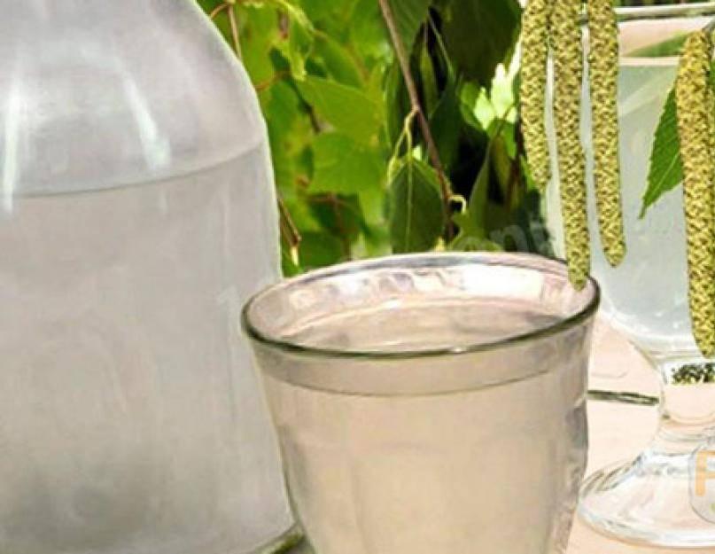 2 самых распространенных рецепта браги на березовом соке | иннес | яндекс дзен