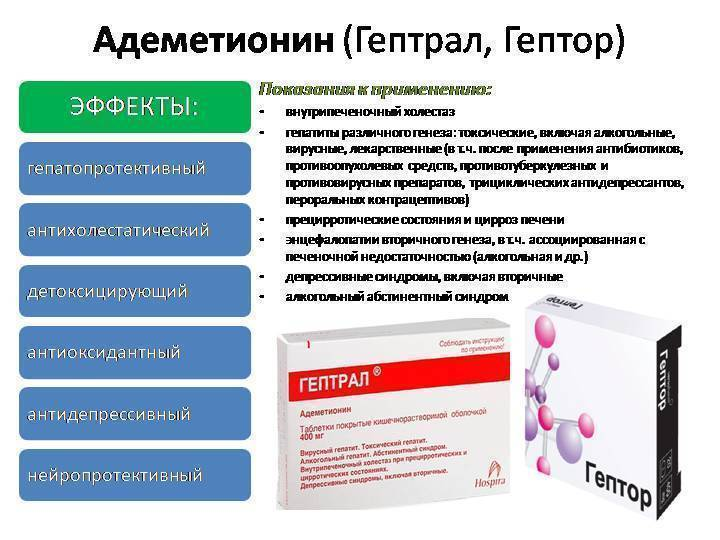 Авторитетное мнение врачей: что лучше – гептор или гептрал